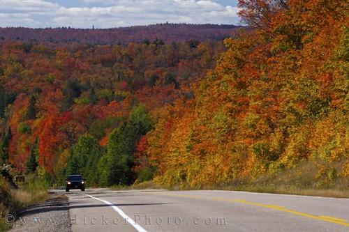 3d Free Fall Nature Wallpaper Algonquin Provincial Park Ontario Canada Shades Of Fall