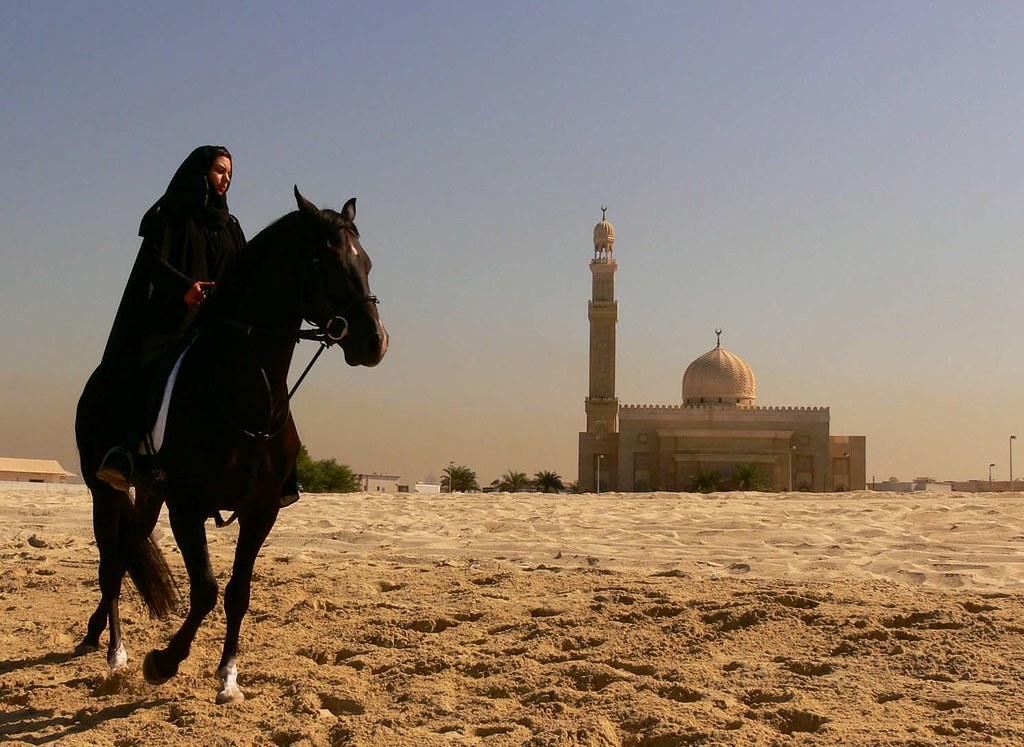 Dubai Girls Wallpaper Black Horse On Beach While Shooting An Ad Dubai