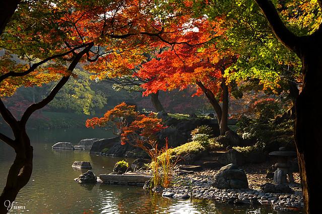 3d Garden Wallpaper Free Autumn Japanese Garden Yumi Flickr