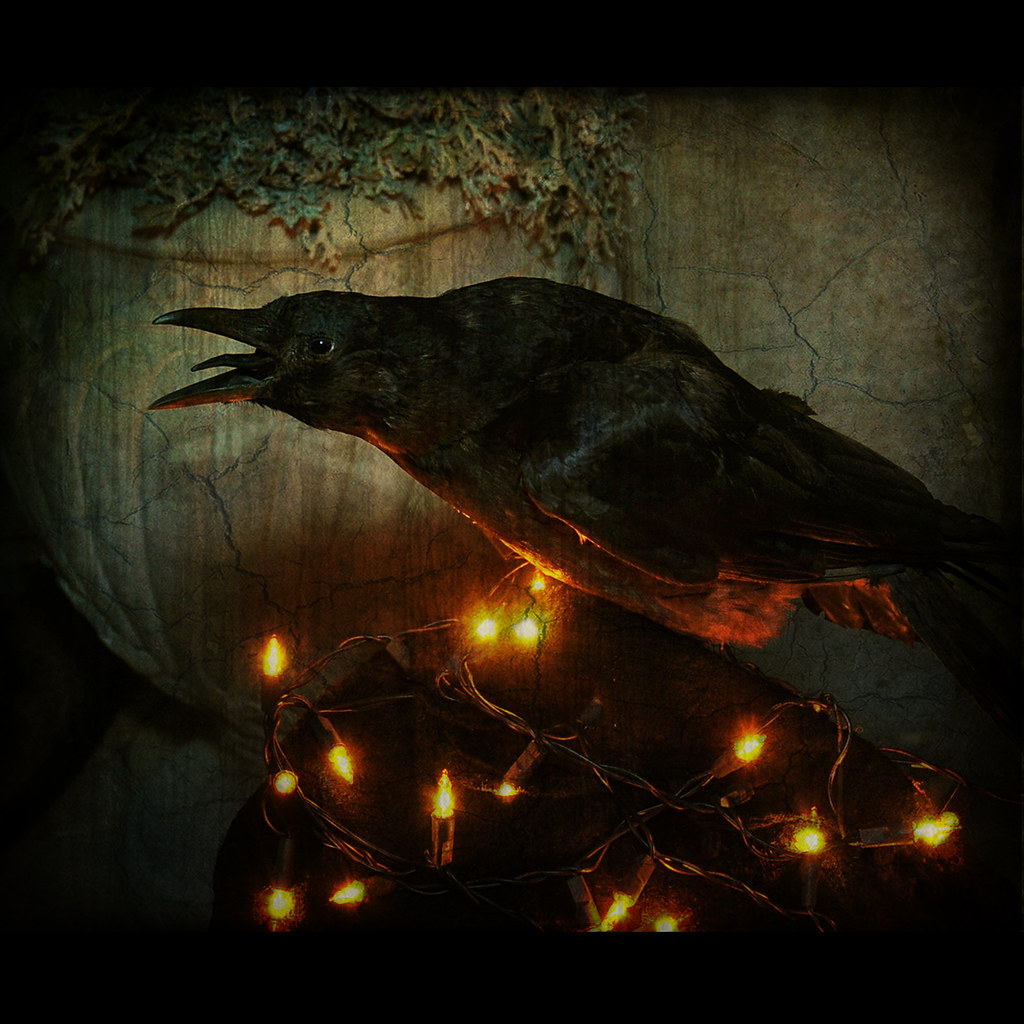 Best Wallpapers Hd Pro Quoth The Raven Quot Nevermore Quot But The Raven Still