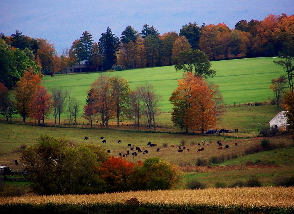 White Gold Wallpaper Hd Vermont Countryside Spotted This Beautiful Countryside