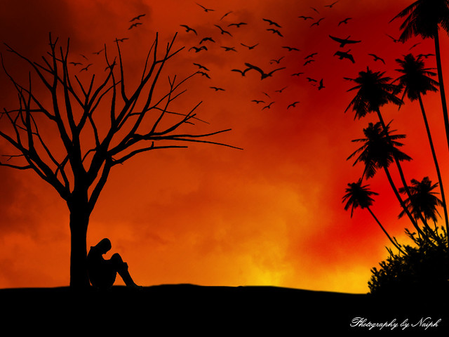 3d World Map Wallpaper For Pc Lonely Sunset Gone Crazy P Parkour Naiph Flickr