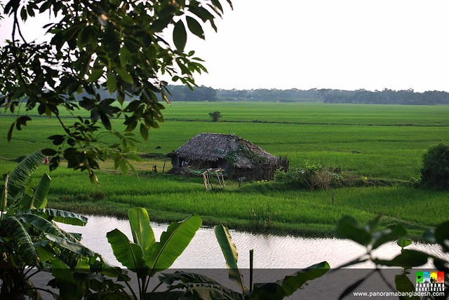 Www Hd Wallpaper Com Nature Gram Bangla 1 A Beautiful Rural Scene Of Bangladesh I