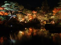 Japanese Garden at Night | Daikonjima, Matsue, Japan | Flickr