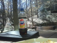 Wilderness Pepsi Throwback. (actually, just patio lunch ...