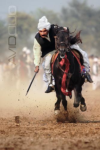 7 Horse Wallpaper 3d Tent Pegging Rajooa Sadaat Faisalabad My First Ever