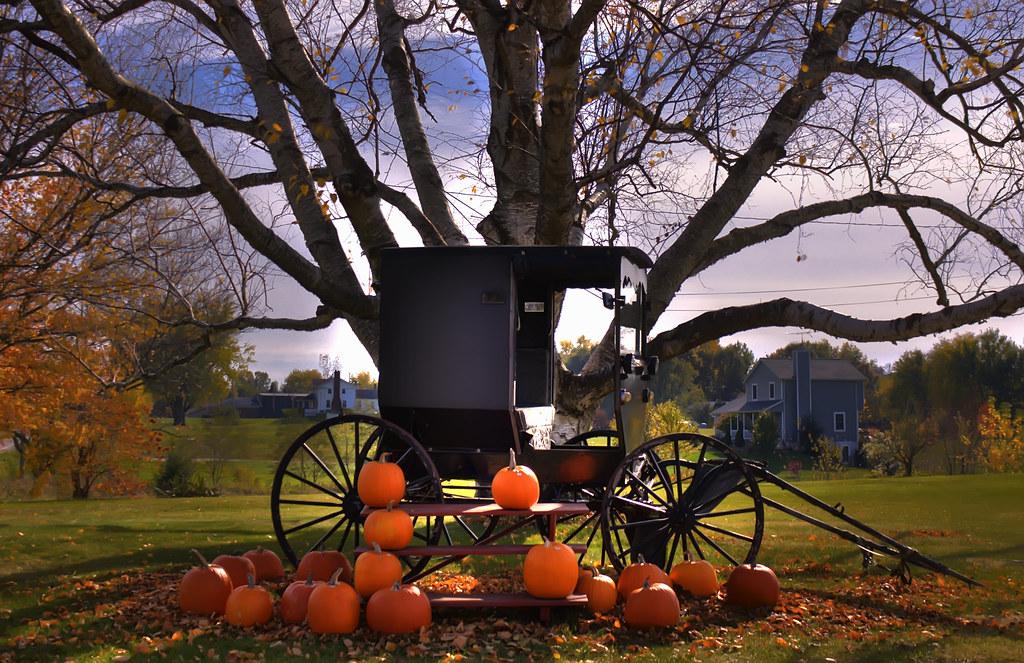Free Fall Pumpkin Wallpaper Amish Buggy Portage County Ohio Theaterwiz Flickr