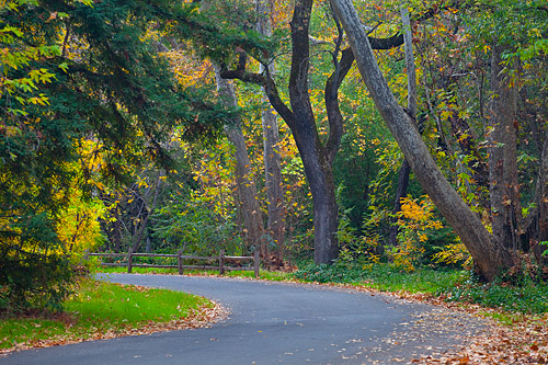 Free Fall Colors Wallpaper Bidwell Park In The Fall Chico Ca Fall Colors Along