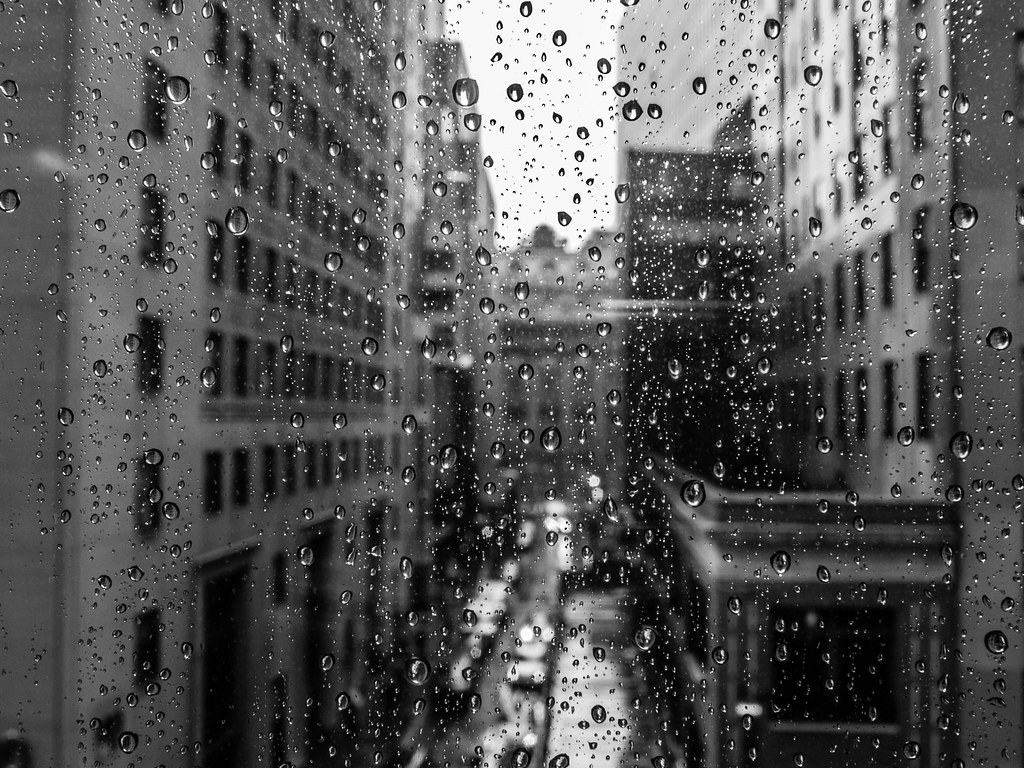 Girl With Camera Hd Wallpaper Rain On My Window Broad Street Nyc Steve Starer Flickr