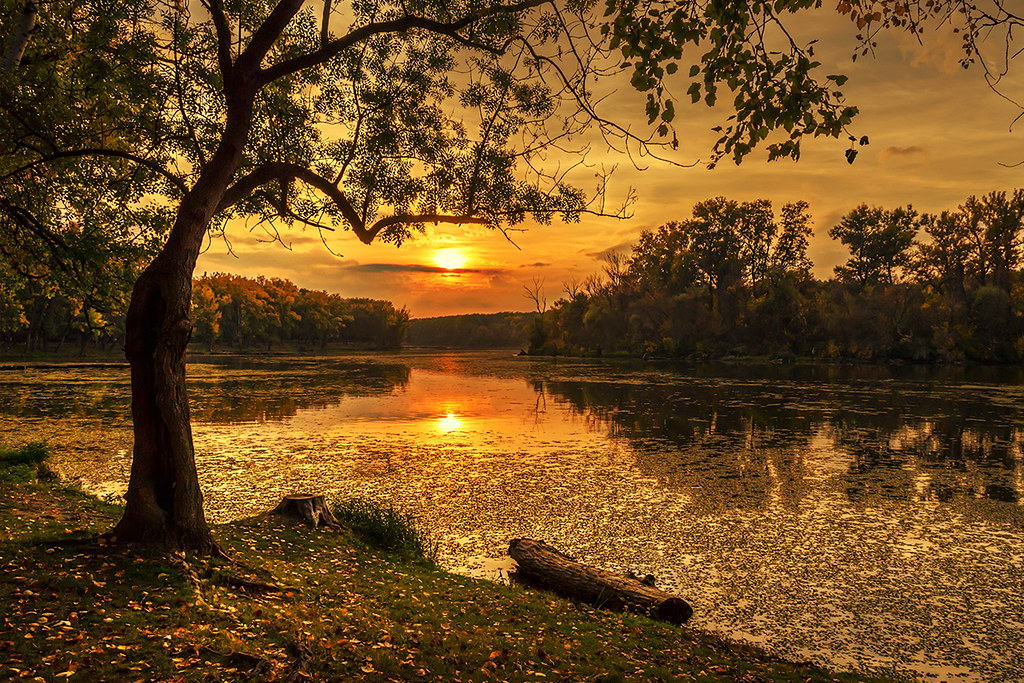 Free Wallpaper Backgrounds For Fall Autumn Sunset Nikon D5100 With 18 55 Vr Lens Thank You