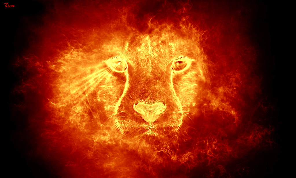 Hd Wallpapers 1080p Nature Animated Set The Lion On Fire Feel Free To Share My Artwork