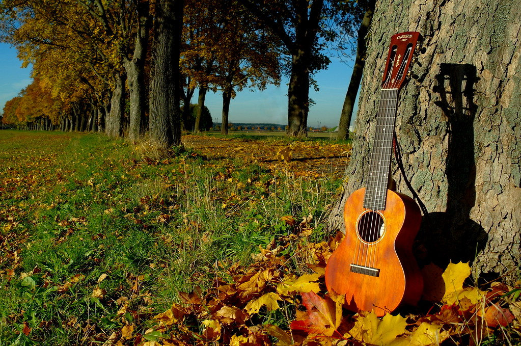 Cute Autumn Wallpaper Autumn Avenue With Guitalele Quot Guitar Ukulele Quot By Gretsch