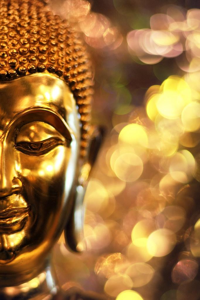 New Funny Wallpaper Hd Buddha Buddha Panupong Roopyai Flickr