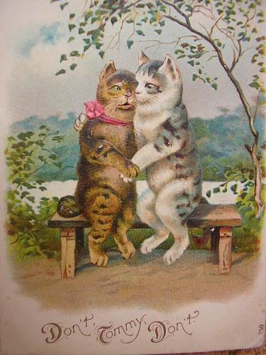 Cute Little Kitten Desktop Wallpapers Vintage Cats Postcard Vintage Postcard Of Two Cats