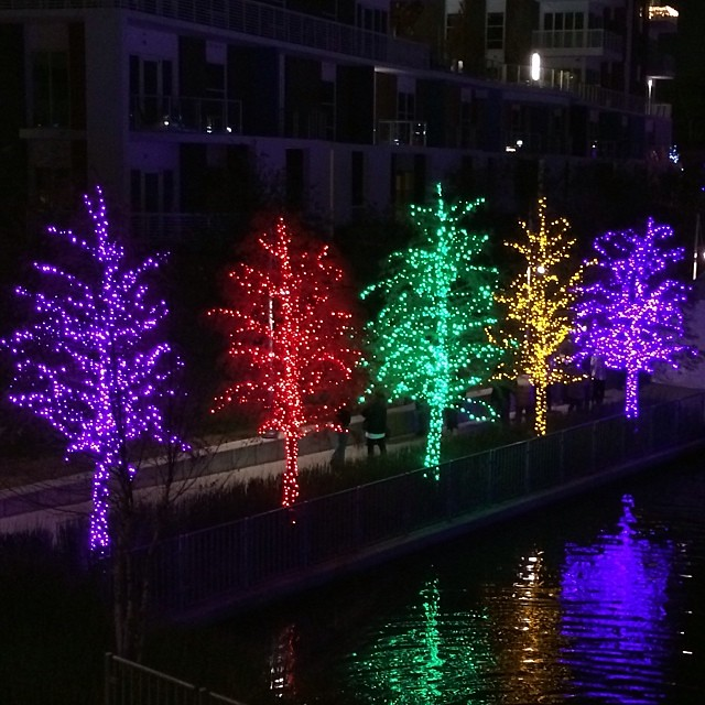 Light wrapped trees #christmas #christmaslights #addison #\u2026 Flickr