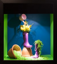 Colour Window Display 2014 | Seneca Visual Merchandising ...