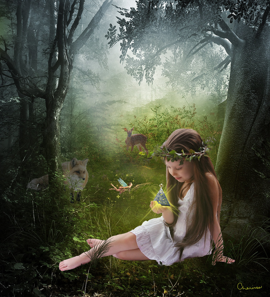 World Map Wallpaper Black And White Fairy Light She Was Lost In The Dark Woods Until A Fairy