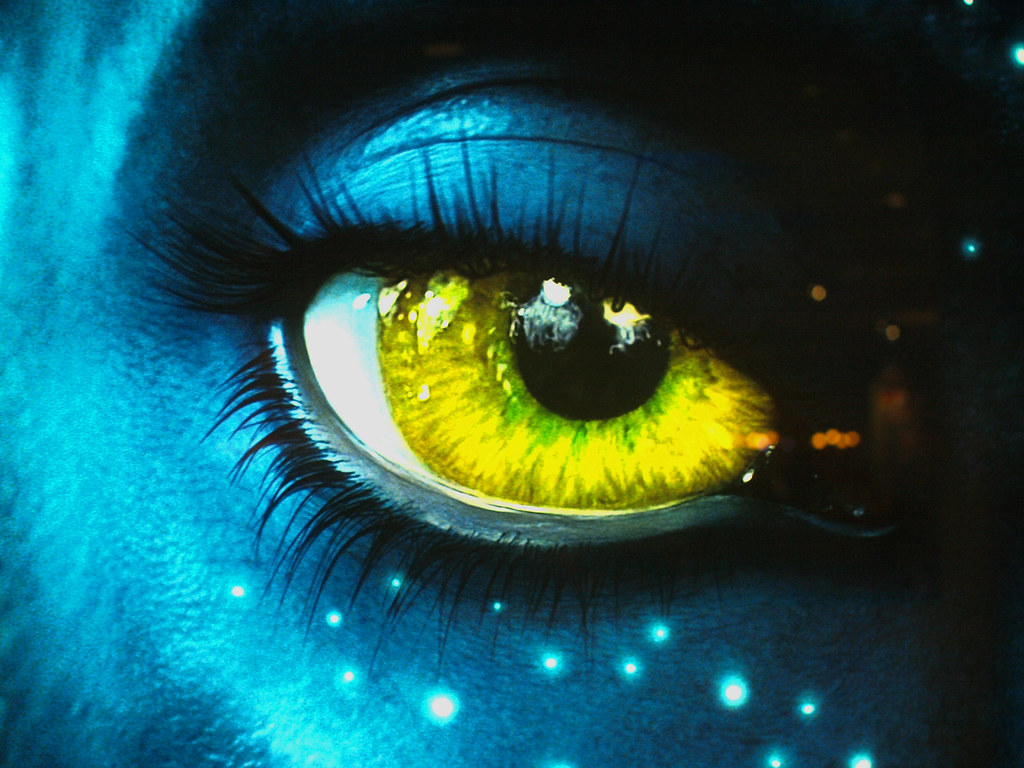 Avatar Wallpaper Hd 3d Avatar Eyes Piercing Look Watched The Movie Last Week