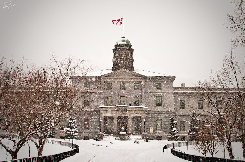 Fall Winter Background Wallpaper Mcgill University In Winter School Has Started Again