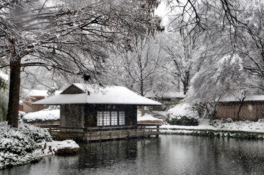 Oregon Ducks 3d Wallpaper Snow Japanese Garden Fort Worth Texas Snowfall Winter Stor