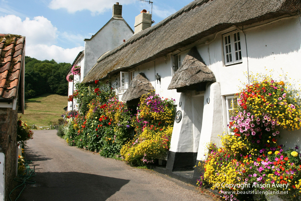 Free 3d Scenic Wallpaper Thatched Cottages Church Row Branscombe Devon More
