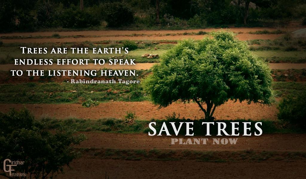 Save Trees Giridhar Flickr