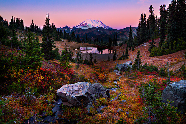 Free 3d Fall Wallpaper Tipsoo Fall Color A Sunrise Image From Chinook Pass This