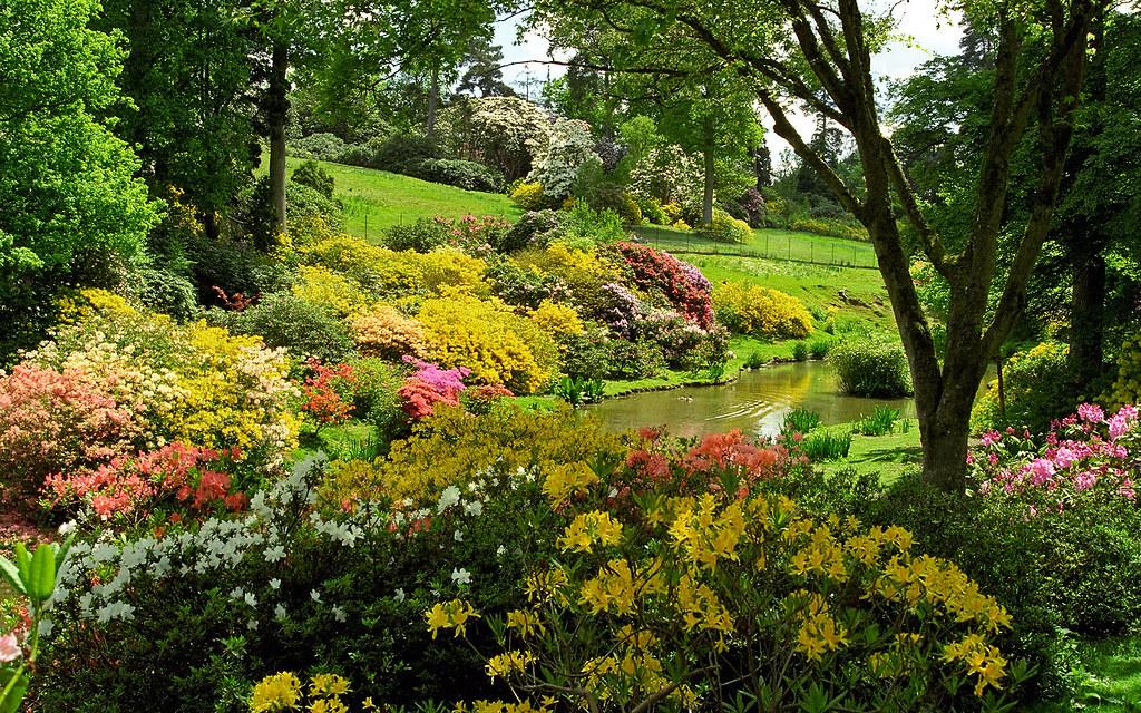 3d Garden Wallpaper Free Leonardslee Gardens Lower Beeding West Sussex England
