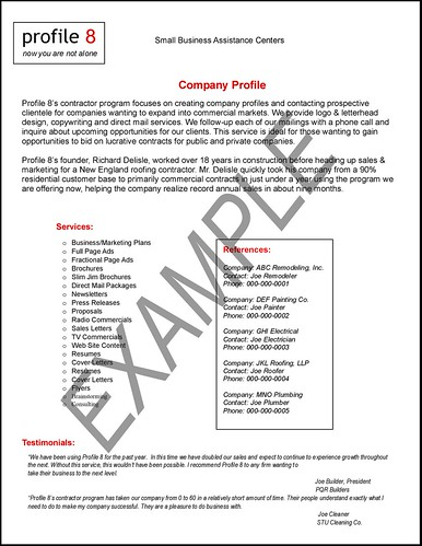 ArpaBlogS COMPANY PROFILE SAMPLE