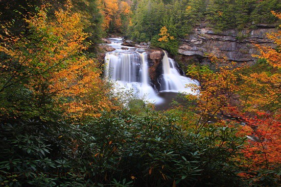 Great Falls Wallpapers Hd Widescreen Blackwater Falls Autumn Waterfall Fall Foliage If You