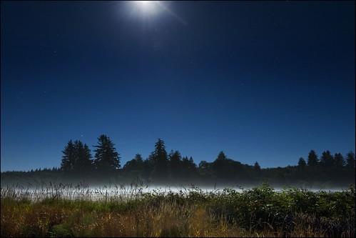 3d Grass Wallpaper Moonlit Field Jody Miller Flickr