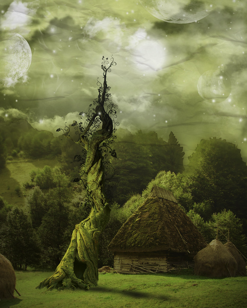Forest In 3d Landscape Wallpaper Beanstalk 131 365 Photo Manipulations Project