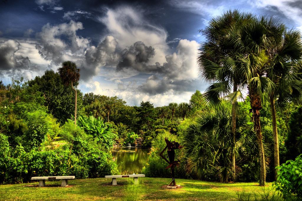 Free Pc Wallpaper 3d Dreamy Landscape At Kanapaha Botanical Gardens Florida