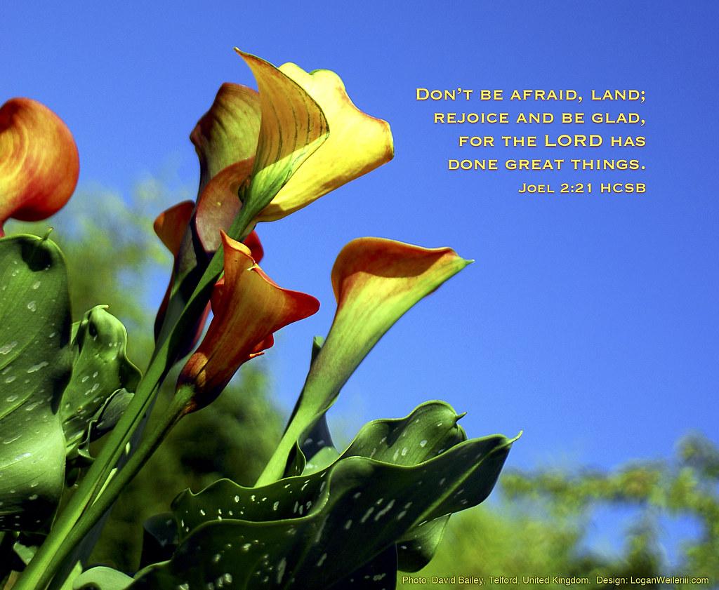 God 3d Wallpaper Download Be Glad Quot Don T Be Afraid Land Rejoice And Be Glad For