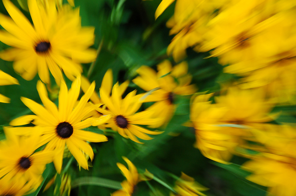 Cool Nature Wallpapers 3d Yellow Flowers Abstract An Abstract Background Of Yellow