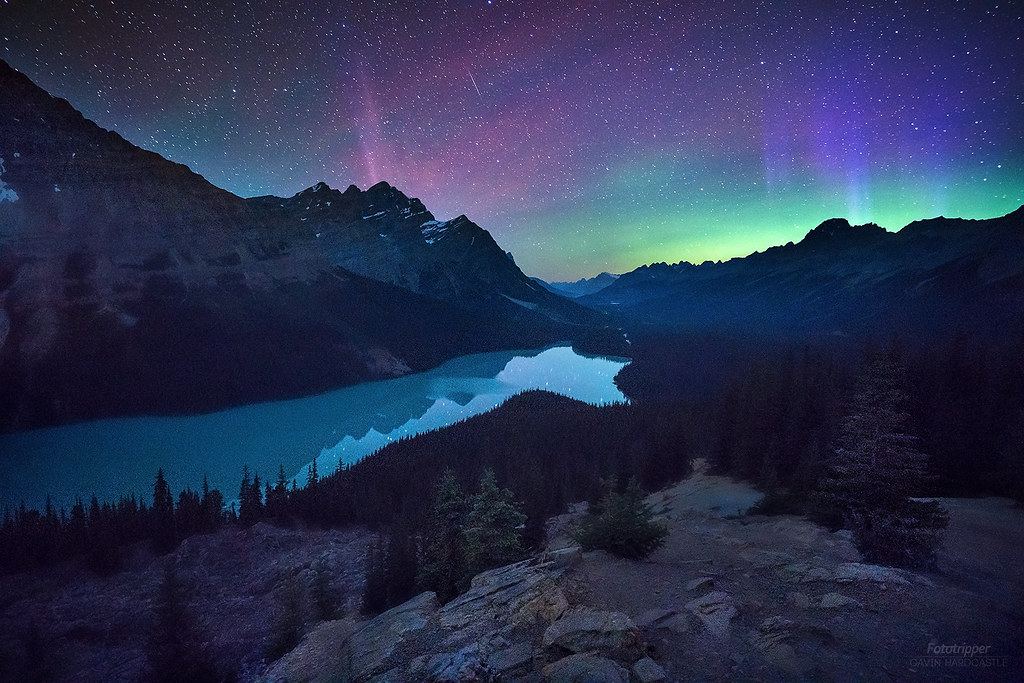 Fall Backgrounds Wallpaper At Night Bonus Aurora Peyto Lake Banff Last Month I Was
