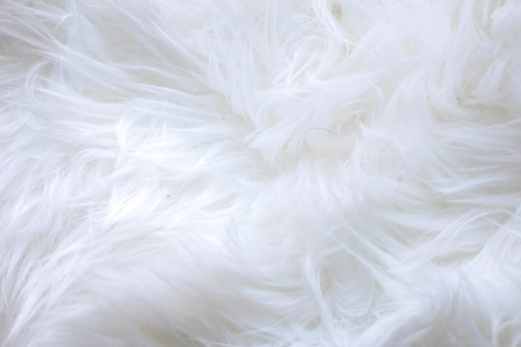 Www 3d Wallpaper Download Com White Fur Background 📷 Stock Photos Fotos Download 💾 P
