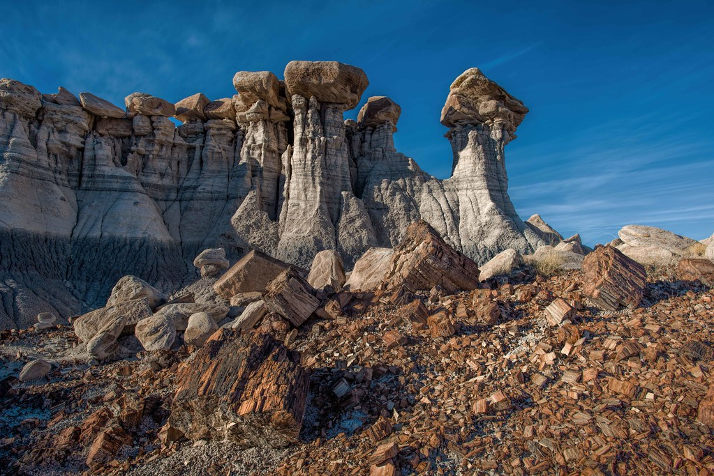 S New To Petrified Forest National Park | Tumbling Wood In Devil's