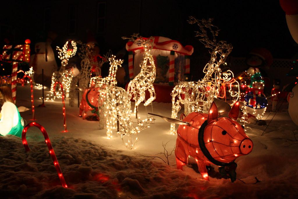 House #5 Holiday Lights, flying pig lights 2010 \u0027Love the \u2026 Flickr