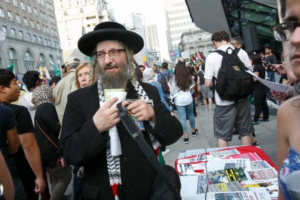 Image result for rabbi dovid weiss