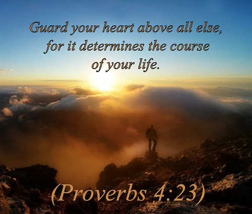 Spiritual Quotes For Laptop Wallpaper Proverbs 4 23 Nlt 11 19 14 Today S Bible Scripture