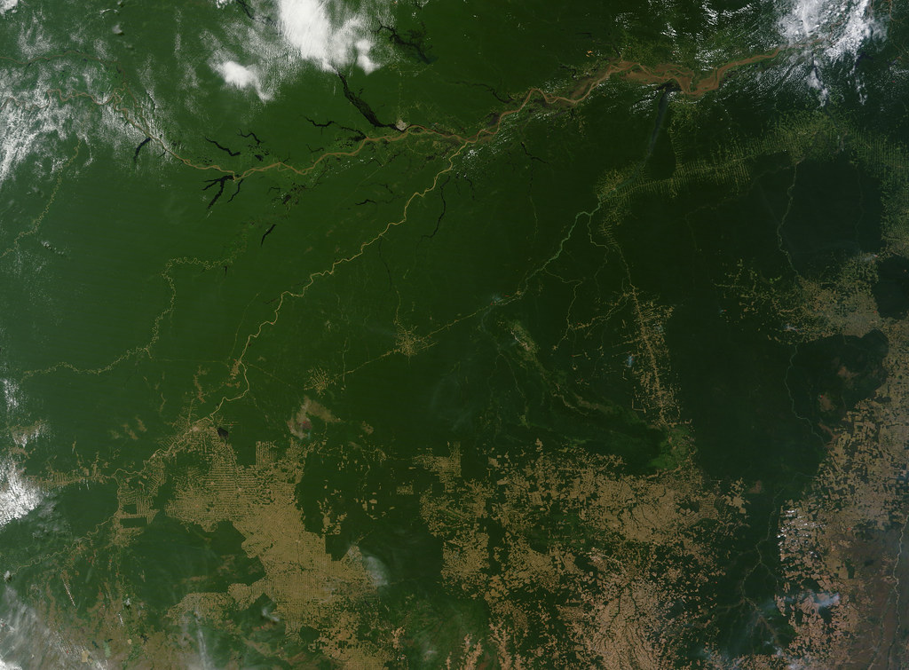 Free Flow Cloud Free View Of The Amazon | Nasa Image Captured July