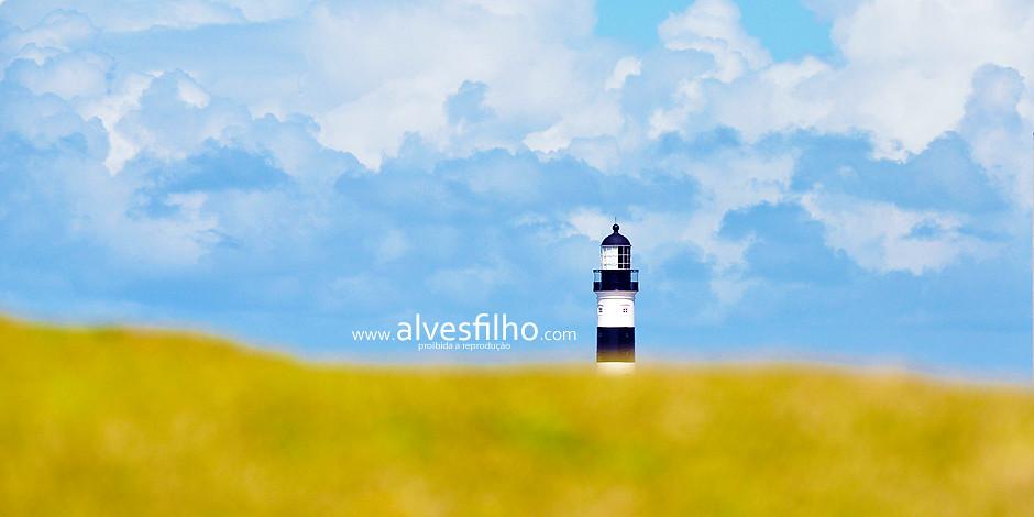 365 Project - Tunisio Alves Filho