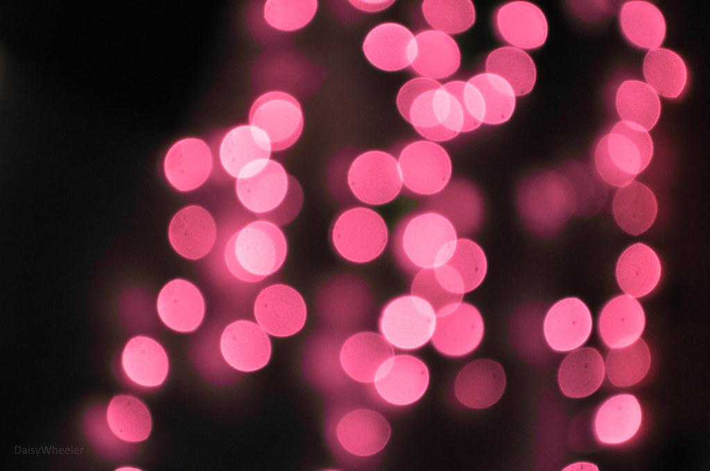 Black And Purple Wallpaper Pink Lights Daisy 28 Flickr