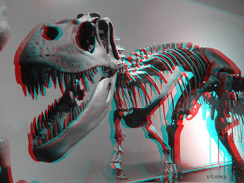 New 3d Wallpaper For Mobile Museo Ciencias Naturales Madrid 3d Anaglifo Anaglyph