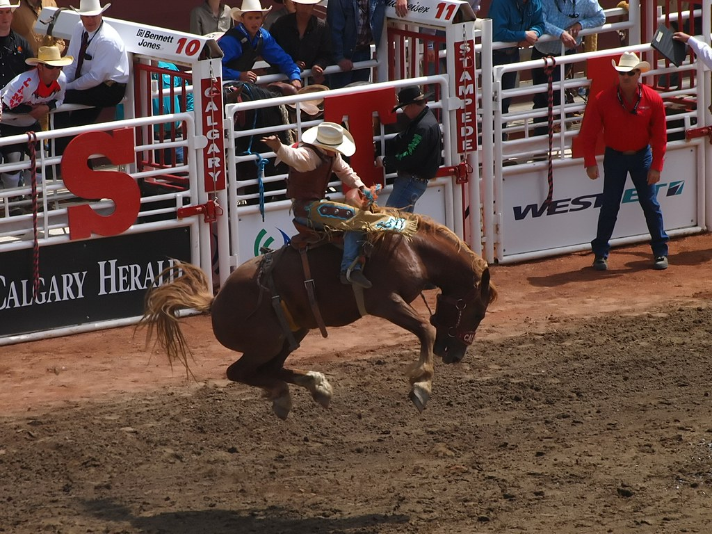 Free 3d Hd Wallpapers For Mobile Saddle Bronc Riding At The Calgary Stampede Calgary