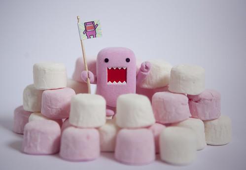 Cute Marshmallow Wallpaper Hd Domo Fort Jennwrenn Flickr