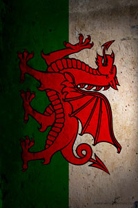 Iphone 4s Wallpaper Hd Download Wales Flag Wallpaper For Iphone 4s 640x960 Wallpapers