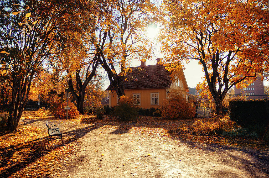 Free Fall Harvest Wallpaper Autumn House Well At Least It Has Yellow Right I