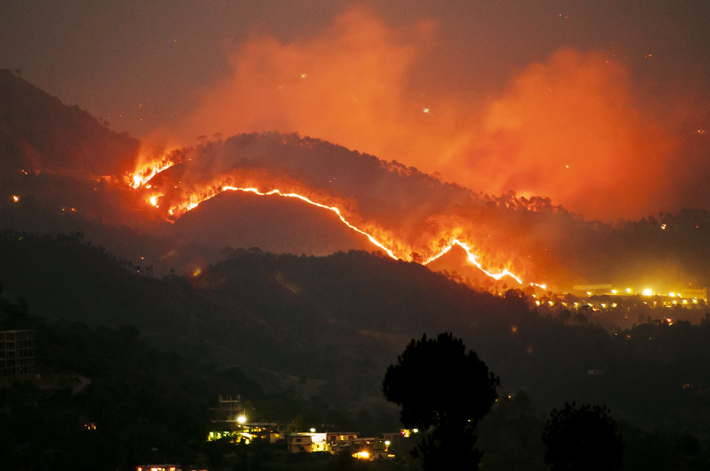 3d Wallpapers In Mumbai More Fires In The Himalayas Solan Rajgarh Hills Forest